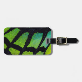 Ala de la mariposa de la verde lima y del negro etiquetas para maletas