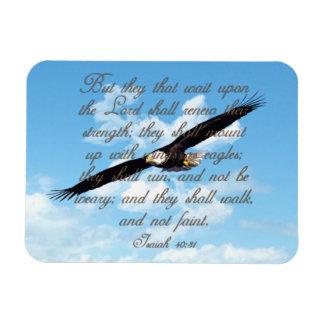Alas como Eagles, biblia del cristiano del 40:31 Iman