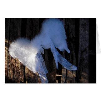 Alas del invierno - tarjeta en blanco
