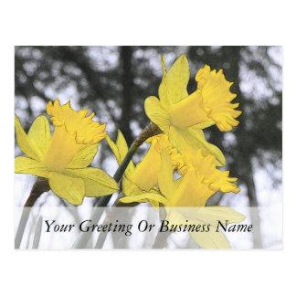 Alcanzar hacia arriba - narcisos amarillos tarjetas postales