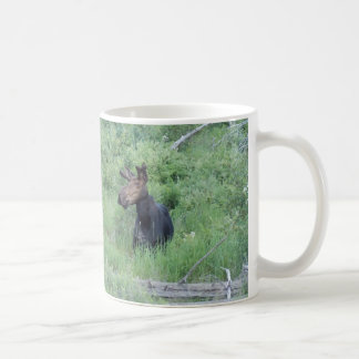 Alces 2 de Greenville Taza De Café