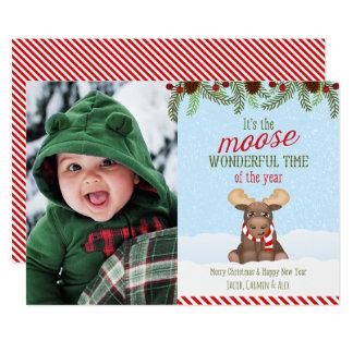Alces del navidad - tarjeta de Navidad de la foto Invitación 12,7 X 17,8 Cm