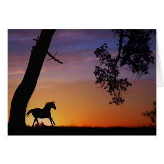 Alcohol de la tarjeta de condolencia del caballo