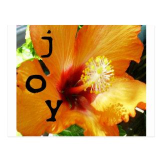 Alegría - Hybiscus anaranjado Tarjetas Postales