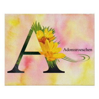 Alfabeto de las flores con el fondo de la acuarela póster