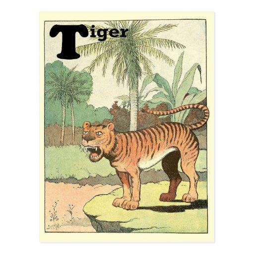 Alfabeto del tigre postales