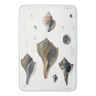 Alfombrilla De Baño Estera de baño de los Seashells