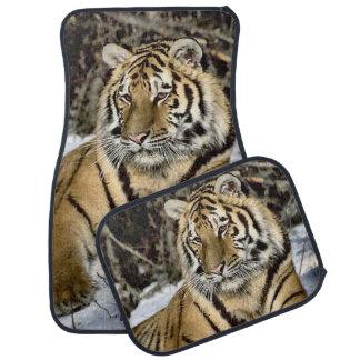 Alfombrilla De Coche Arte de los amantes del tigre siberiano