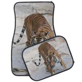 Alfombrilla De Coche Tigre 1216 AJ
