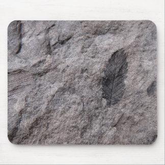 Alfombrilla De Ratón 350 millones de años. Impresión fósil de la foto