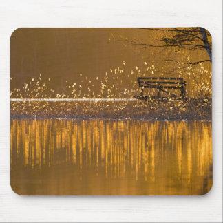 Alfombrilla De Ratón Banco solo por el lago en mousepad ligero de oro