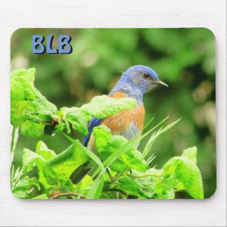 Alfombrilla De Ratón Bluebird en el sacacorchos Bush sus iniciales