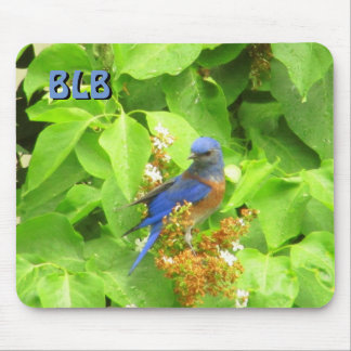 Alfombrilla De Ratón Bluebird en el seto de la lila sus iniciales
