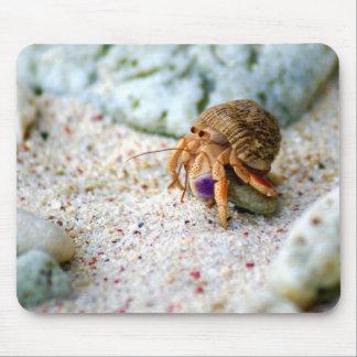Alfombrilla De Ratón Cangrejo de la arena, Curaçao, islas caribeñas,
