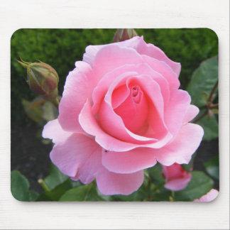Alfombrilla De Ratón Cojín de ratón con color de rosa rosado hermoso