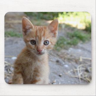 Alfombrilla De Ratón Cojín de ratón con el gato lindo