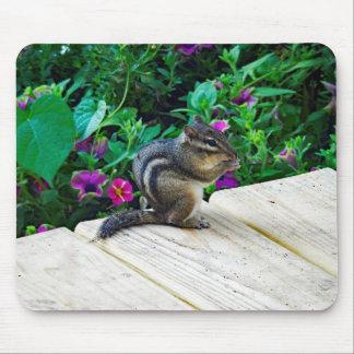 Alfombrilla De Ratón Cojín de ratón del Chipmunk 224