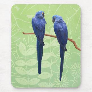 Alfombrilla De Ratón Cojín de ratón del dúo del Macaw del jacinto