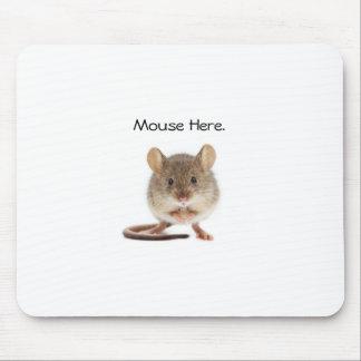 Alfombrilla De Ratón Cojín de ratón fresco