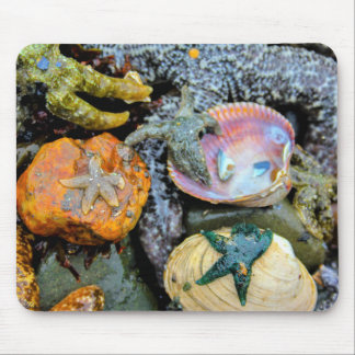 Alfombrilla De Ratón Cojín de ratón vibrante de las estrellas de mar