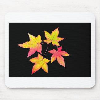 Alfombrilla De Ratón Cuatro hojas de otoño coloreadas en fondo negro