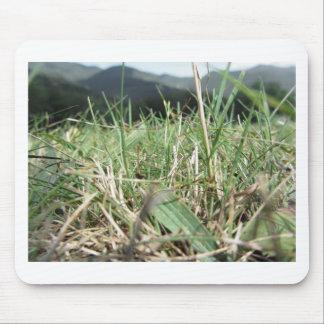 Alfombrilla De Ratón Dentro de, la hierba verde enorme brota por todas