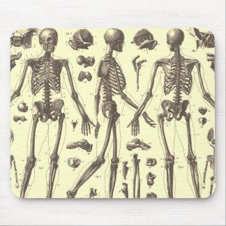 Alfombrilla De Ratón Diagramas del esqueleto del vintage