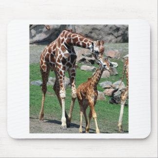 Alfombrilla De Ratón El animal del safari de África de la jirafa