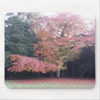 Alfombrilla De Ratón El árbol con rosa sale de la estera del ratón de