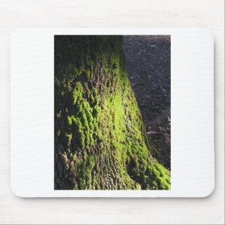 Alfombrilla De Ratón El musgo verde en el detalle de la naturaleza del