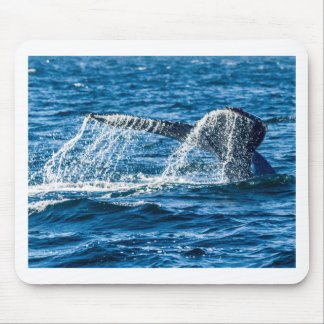 Alfombrilla De Ratón Estado de Washington de la ballena jorobada