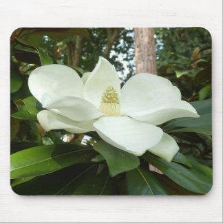 Alfombrilla De Ratón Estera grandiflora del ratón de la magnolia