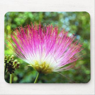 Alfombrilla De Ratón Estera persa del ratón de la flor del árbol de