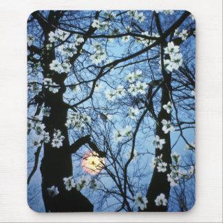 Alfombrilla De Ratón Flores del Dogwood con puesta del sol