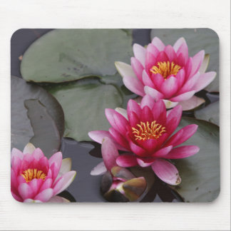 Alfombrilla De Ratón Flores hermosas del lago en el cojín del mause