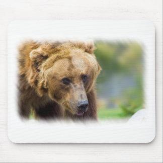 Alfombrilla De Ratón Frontera del blanco del oso grizzly
