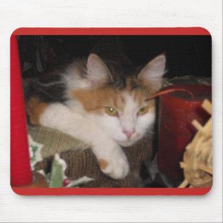 Alfombrilla De Ratón Gato de calicó lindo Mousepad