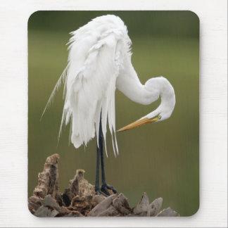 Alfombrilla De Ratón Gran Egret