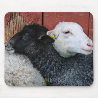 Alfombrilla De Ratón HAMbyWG - cojín de ratón de las ovejas blancas de