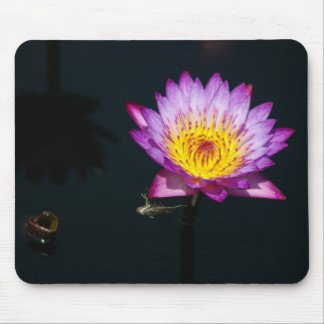 Alfombrilla De Ratón Lotus púrpura Waterlily y cojín de ratón de la