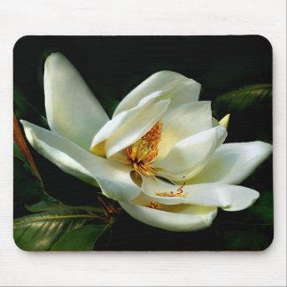 Alfombrilla De Ratón Magnolia blanca en verde