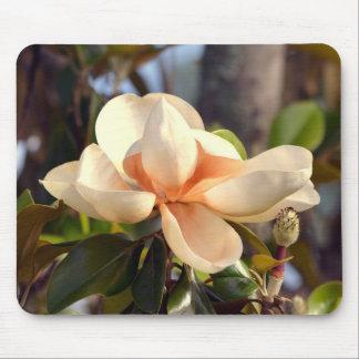 Alfombrilla De Ratón Magnolia de Mississippi