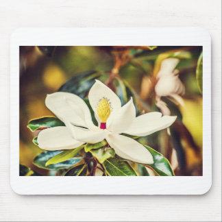 Alfombrilla De Ratón Magnolia en la floración