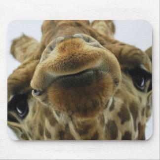 Alfombrilla De Ratón Mauspad jirafa beso