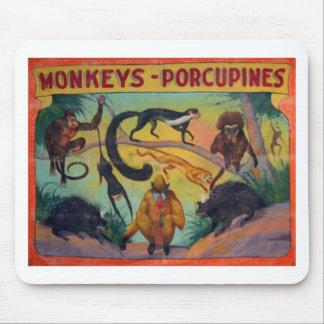 Alfombrilla De Ratón Monos y puercos espines