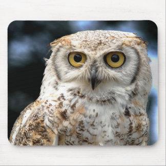 Alfombrilla De Ratón Mousepad Canadian Owl
