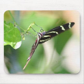 Alfombrilla De Ratón Mousepad de la mariposa de la cebra