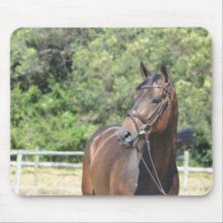 Alfombrilla De Ratón Mouspad - Dunkelbaunes caballo