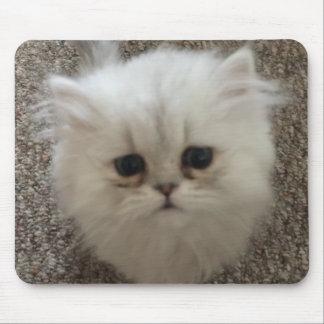 Alfombrilla De Ratón Mullido blanco el gatito con los ojos tristes