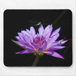 Alfombrilla De Ratón Naipes púrpuras de la libélula de Lotus Waterlily